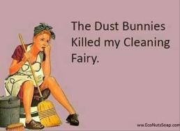 dustbunnies