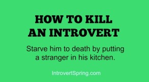 kitchenintrovert